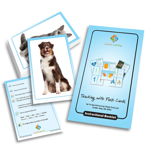 Teaching Common Pets: Building Early Language with Flashcards: image 1