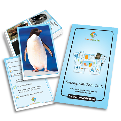 Teaching Common Animals: Building Early Language with Flashcards: image 1