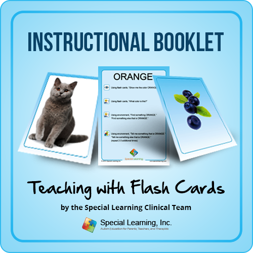 Teaching Early Language with Flash Cards Instructional Guide: image 1