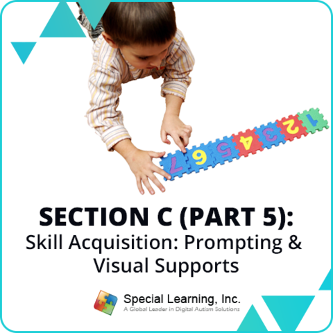 RBT® 2.0 40-Hour Online Training Course- Module 19: Section C (Part 5)- Skill Acquisition: Prompting and Visual Supports: image 1