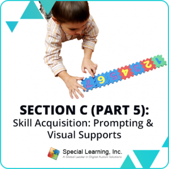 RBT® 2.0 40-Hour Online Training Course- Module 19: Section C (Part 5)- Skill Acquisition: Prompting and Visual Supports