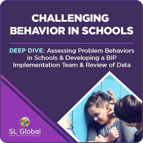 Deep Dive: Assessing Problem Behaviors in Schools and Developing a BIP Implementation Team and Review of Data (Recorded): image 1