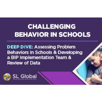 Deep Dive: Assessing Problem Behaviors in Schools and Developing a BIP Implementation Team and Review of Data (RECORDED): image 4