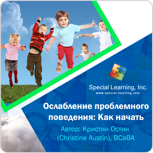 ABA Level 1 (Russian) Session 7:Strategies to Increase Beginner Classroom Participation Skills: Decreasing Problem Behavior with an FBA Part 1: How to Begin: image 1