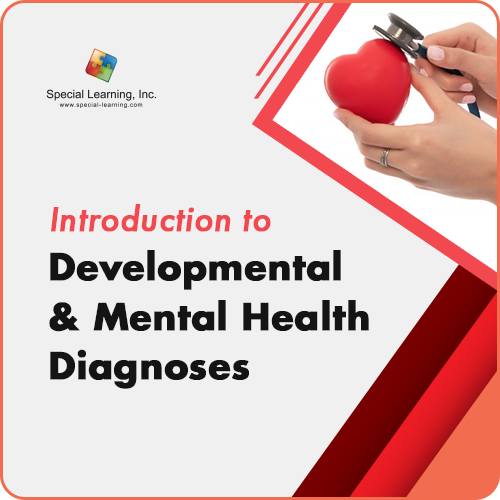 Introduction to Developmental and Mental Health Diagnoses: image 1